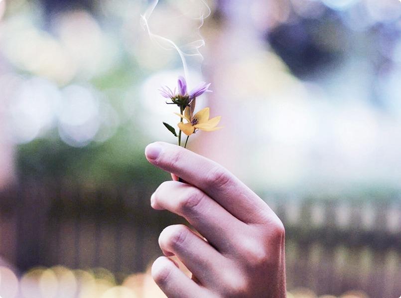 Flower with Smoke