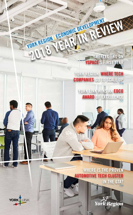 2018 Year in Review cover
