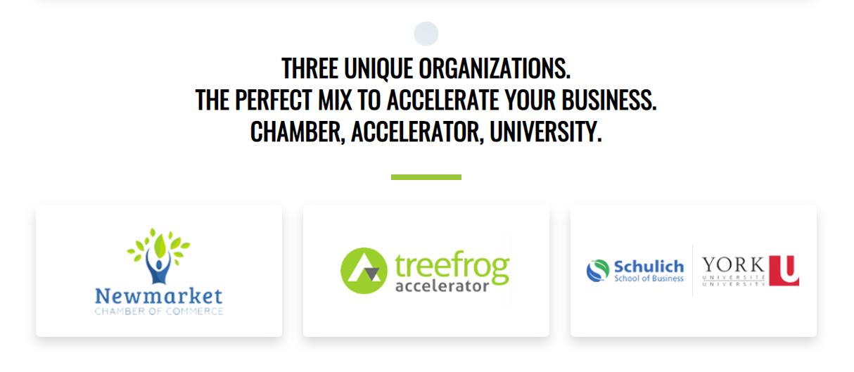 Accelerate Newmarket Organizations